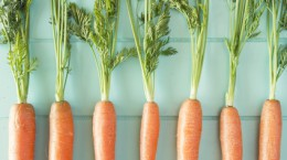 Creative Carrot Recipes | The Cabinet Store MN